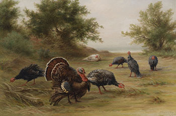 Wild Turkeys, Point Peele, Lake Erie by Frederick Arthur Verner